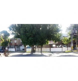 VENDO 3 LOTES, JUNTOS O SEPARADOS. TOTAL 550m2. EXCELENTE ESQUINA. B. Las Avenidas
